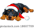 Christmas Rottweiler 18607709