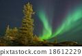 V letter aurora 18612229