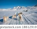 Dog sledding tour in Tasiilaq, Greenland 18612919