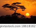 African sunset 18618162