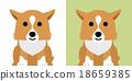 矢量 威爾士矮腳狗 動物 18659385