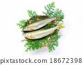 ayu, raising, fish 18672398