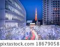 Winter Illumination in Tokyo  18679058