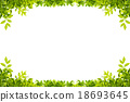 Green leaves frame isolated on white background 18693645