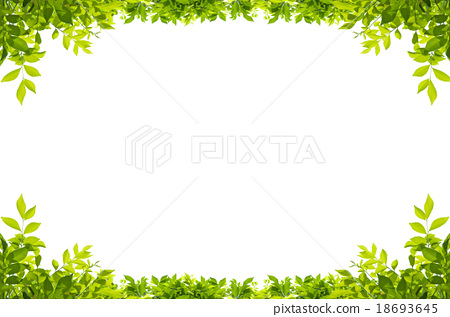 Green leaves frame isolated on white background - Stock Photo ...