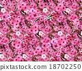 flower spring day 18702250