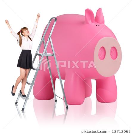 Woman rises up on the stepladder near piggy bank  18712065