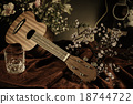 Still life with Ukulele flowers and guitar. 18744722