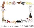 狗 各种各样 姿势 18744809