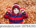 Cute little kid boy on autumn leaves background in 18764283