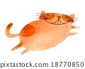 cat, neko, obesity 18770850