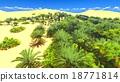 African oasis on Sahara 18771814
