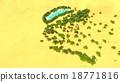 African oasis on Sahara 18771816