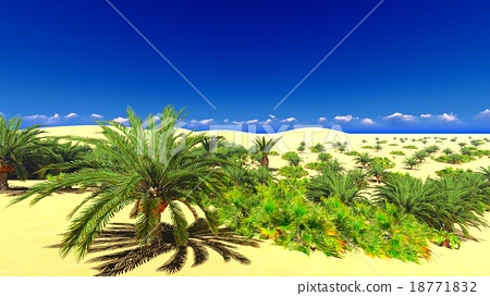 African oasis on Sahara 18771832