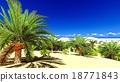 African oasis on Sahara 18771843