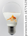 Goldfish in a light bulb. 18774329