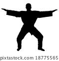 Master samurai - silhouette 18775565