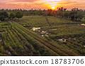 Sunset. 18783706