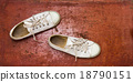 White sneakers on brown background. 18790151