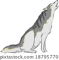 Wolf Howl 18795770