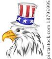 Eagle Hat 18795995