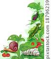 Pests Plants 18796239