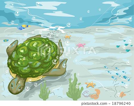 Turtle Swim Underwater 18796240