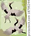 Cranes Bamboo 18796244