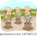 People Traditional Wine Making 18796513