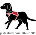 Guide Dog Stencil 18796785