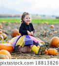 Little kid girl with lot of pumpkins on field 18813826