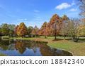 สวน,สวนสาธารณะ,ฤดูใบไม้ร่วง 18842340