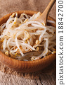 Raw bean sprouts mung macro in a wooden bowl 18842700