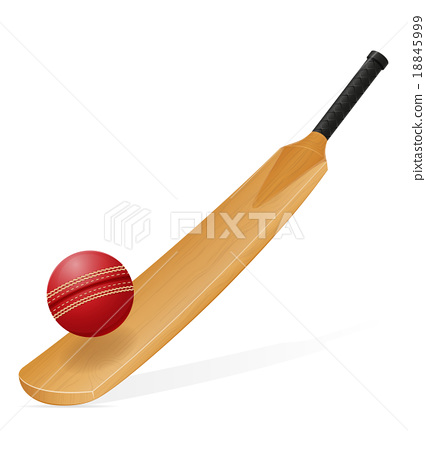 cricket bat and ball vector illustration 18845999