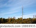 Single dead tree 18869935