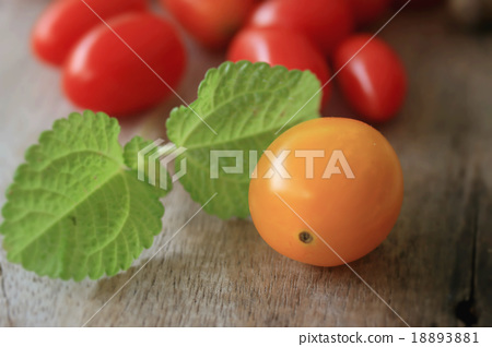 fresh tomatoes with mint leaves - Stock Photo [18893881 ...