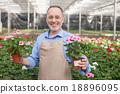 花園 工人 勞動者 18896095