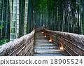 bamboo woodland at Adashino Nenbutsu-ji temple 18905524