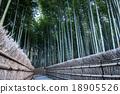 bamboo woodland at Adashino Nenbutsu-ji temple 18905526
