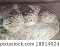 Hypousosaurus(原始)/晚白堊紀的恐龍蛋/蛋化石 18914024