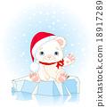 polar, bear, vector 18917289