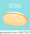 fresh hot dog graphic vector illustration 18927307
