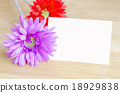 Pastel artificial flower with white note paper 18929838