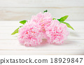 Pink pastel artificial carnation flowers 18929847