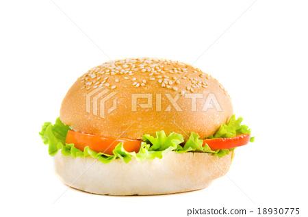 hamburger no meat 18930775