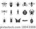 Insect icons - Illustration 18943988