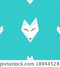 Arctic Fox Blue Background 18944528