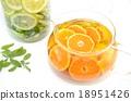 橘子 蜜柑 水果茶 18951426