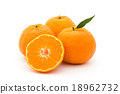 만다린 오렌지 : mandarin orange 18962732