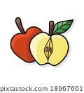 fruits apple doodle 18967661